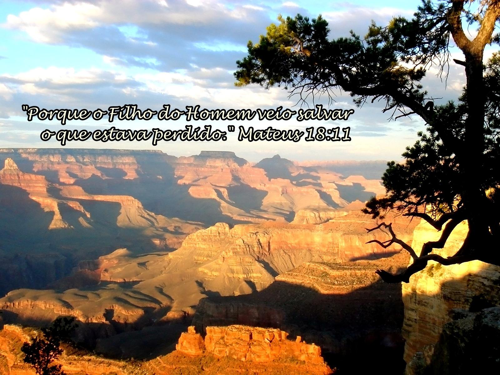 Versiculo Para Quem Esta Afastado Dos Caminhos Do Senhor: Pastor Cássio: 09/01/2011