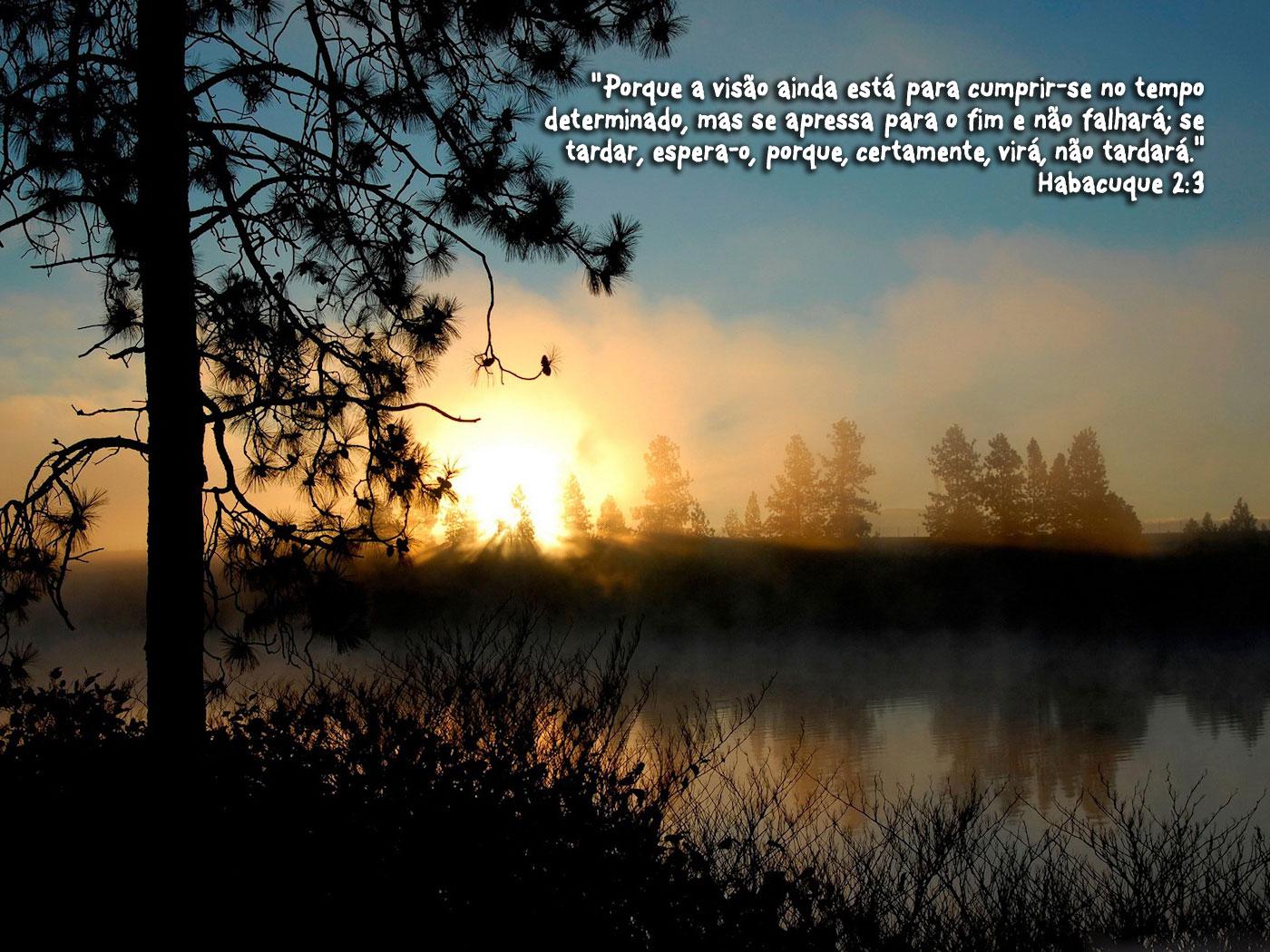 Persevere Em Oração Que Deus Irá Cumprir: Devocional Diário