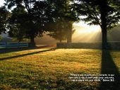 http://www.devocionaldiario.com.br/imagens/tn_trees_rays.jpg